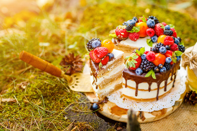 Summer berry cake stock images