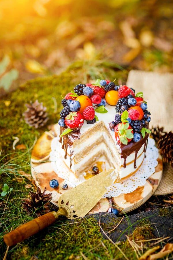 Summer berry cake stock photos