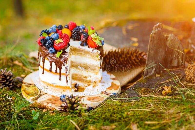 Summer berry cake stock image