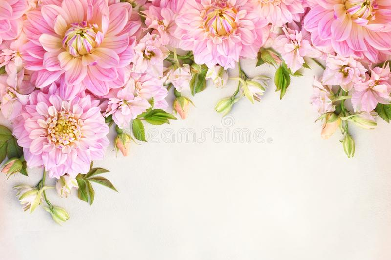 Summer blossoming delicate dahlia and pink blooming flowers festive background. Pastel and soft bouquet floral card, toned stock photos
