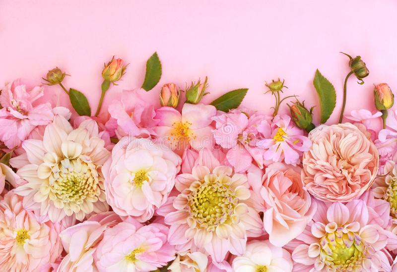 Summer blossoming delicate dahlia and pink blooming flowers festive background,. Pastel and soft bouquet floral card, toned royalty free stock image
