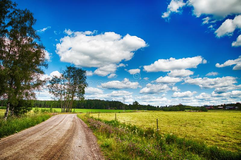 Summer with blue sky in Varmland. Summer with blue sky and meany clouds and to the right you se yellow field stock photos