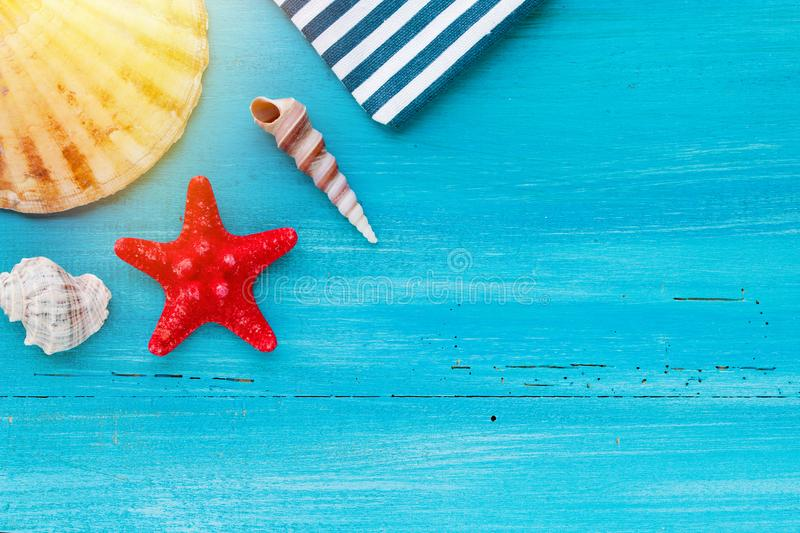 Summer board of sea shells scallop and star fish on blue wooden background royalty free stock photo