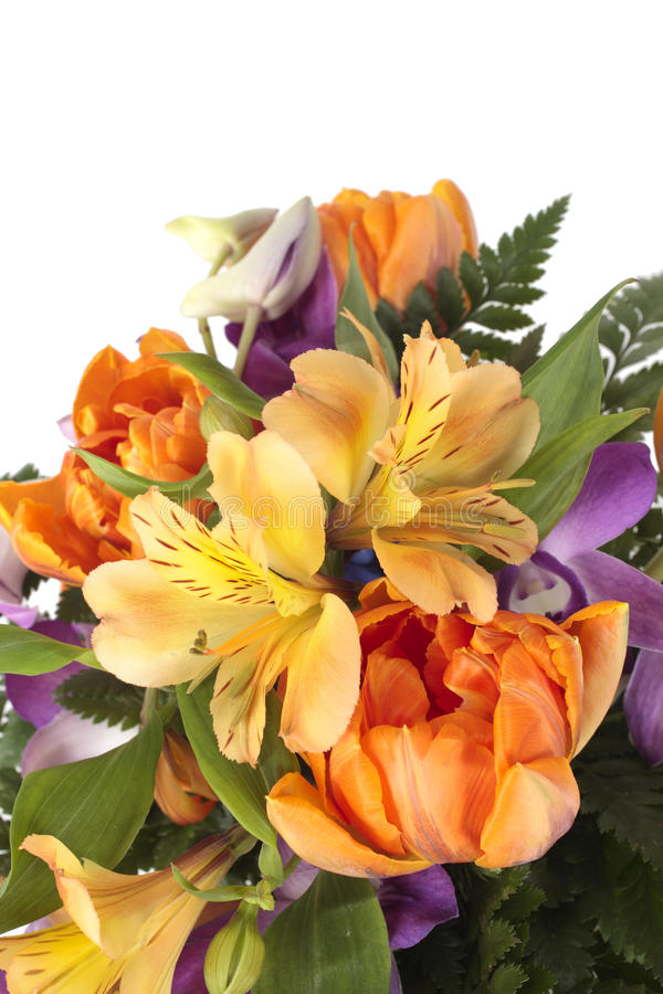 Download Summer bouquet stock image. Image of freshness, nature - 24237651