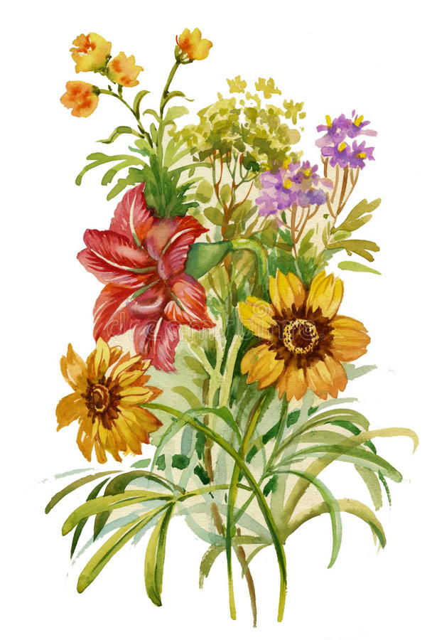 Summer Bouquet Of Flowers Stock Image