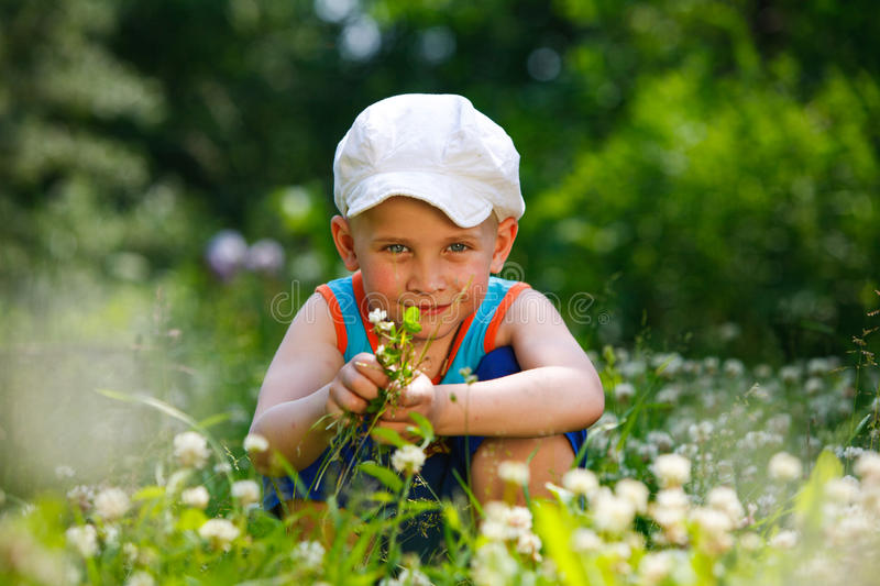 Summer boy among the clover royalty free stock photo