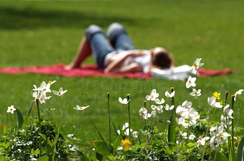 Summer break. Summer, rest, relaxation, picnic, flower stock photo