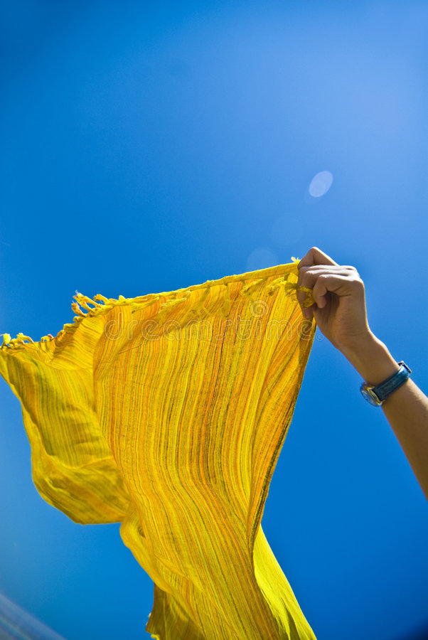 Summer breeze royalty free stock image