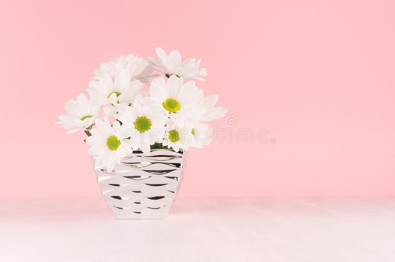 Summer bright chamomile bouquet in modern metallic glossy vase on soft light pink pastel background and white wood table. Summer bright chamomile bouquet in royalty free stock image