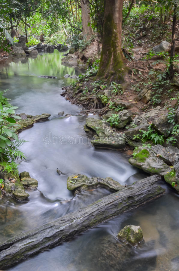 Download Summer brook stock photo. Image of reflections, canyon - 25603168