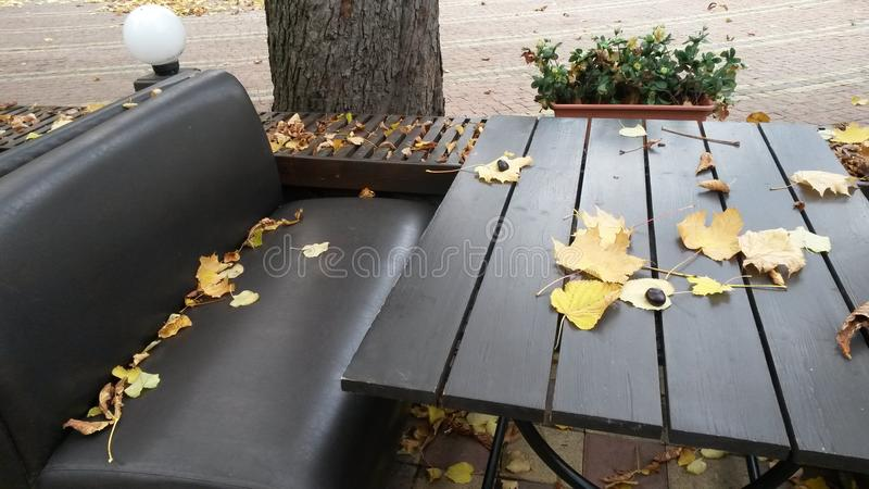 Summer café in the autumn Park. The table and bench strewn with. Leaves.autumn background stock photo