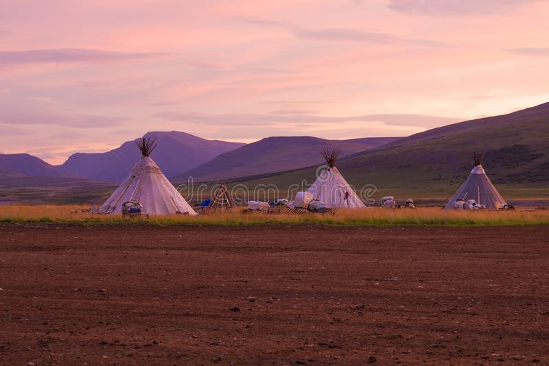 Summer camp of nomadic reindeer herders at dawn. Yamal. Russia royalty free stock photos