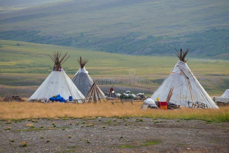 Summer camp of reindeer herders, morning. Yamal, Russia. Summer camp of reindeer herders on august morning. Yamal, Russia stock images