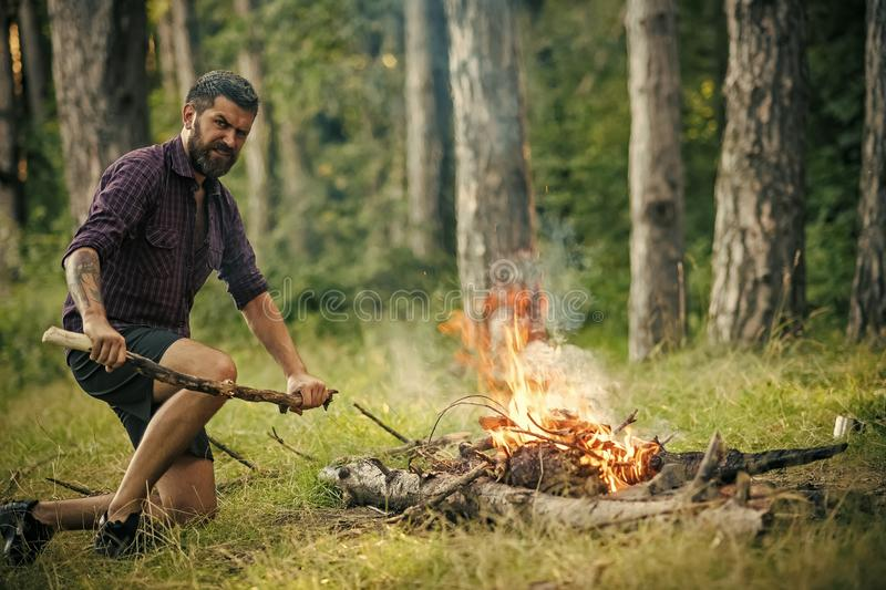 Summer campfire. Man hiker make fire in forest stock photography