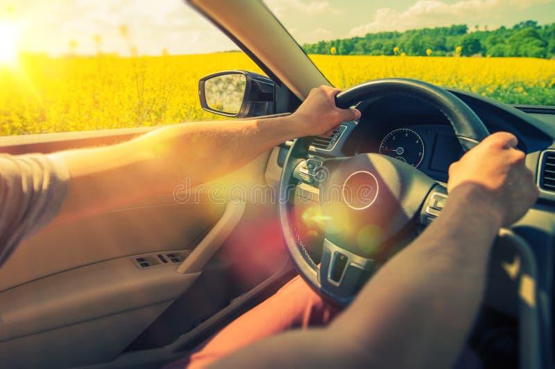 Summer Car Trip. Enjoying Car Ride Through Flowering Summer Fields stock photography