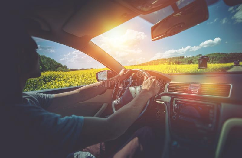 Summer Car Trip. Relaxed Men Driving Between Rapeseed Fields in Sunny Day. Car Driving royalty free stock photos