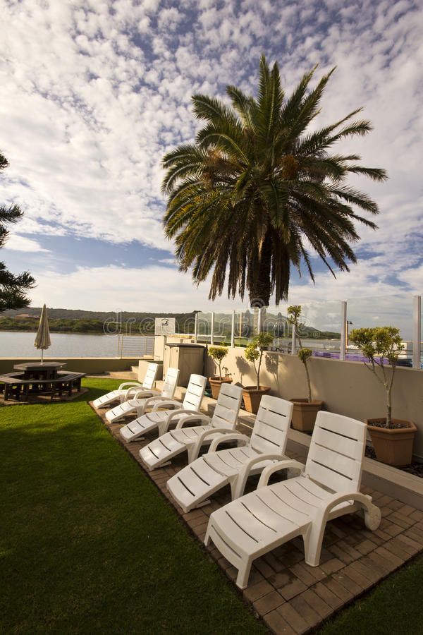 Download Summer Chairs And Palm Tree Stock Image - Image: 30609585