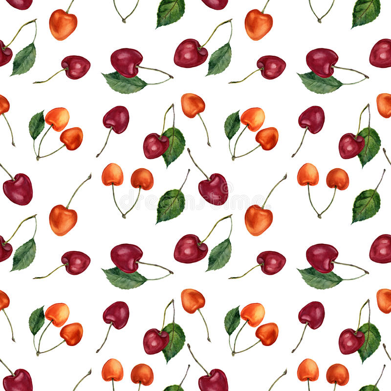 Summer cherry berries watercolor seamless pattern. Watercolor cherries isolated on white background. For design, textile vector illustration