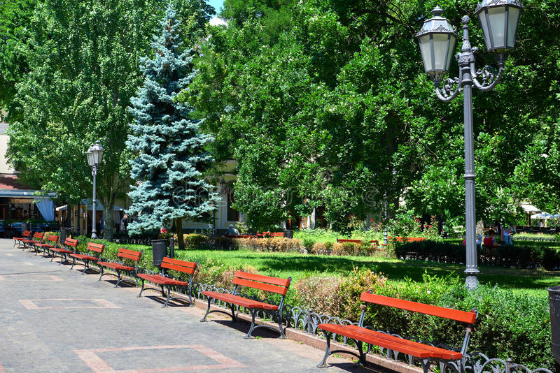 Summer city park, bright sunny day, trees with shadows and green grass stock images