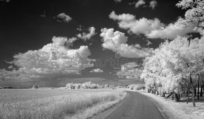 Summer clouds over fields royalty free stock photos