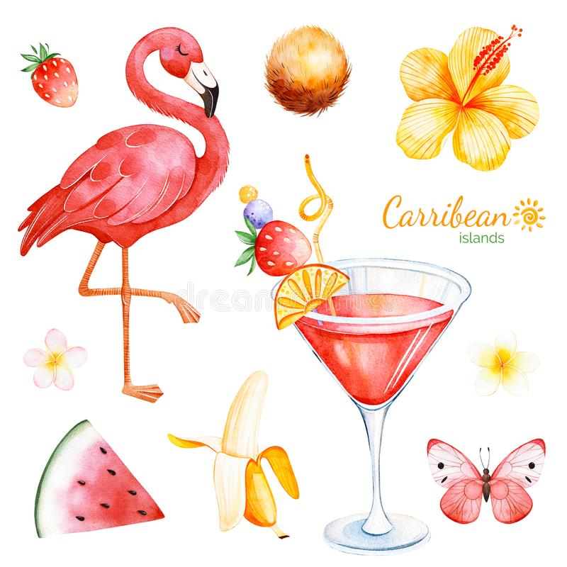 Summer collection with exotic fruits, flamingo stock illustration