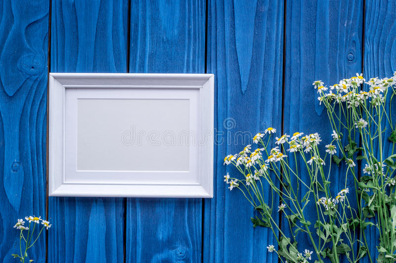 Summer compisition with camomile flowers and frame on blue wooden desk background top view mock up. Summer compisition with camomile flowers bouquet and frame on stock photography