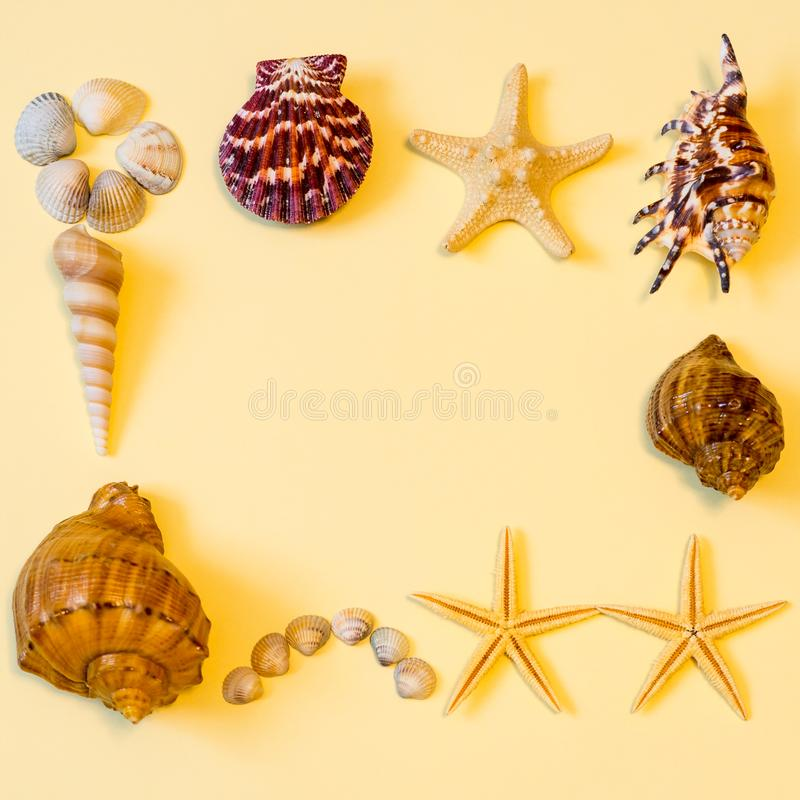 Summer composition. Frame made of different sea shells and sea stars lying on light yellow paper background symbolizing the sand. Flat lay, copy space, top stock photos