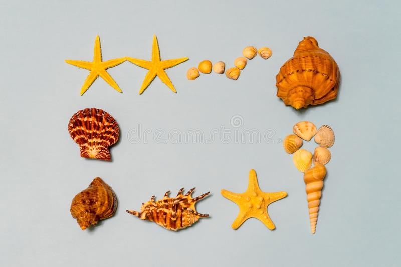Summer composition. Frame made of different seashells and starfish lying on ligth blue paper background symbolizing the sea. Flat. Lay, copy space, top view stock photo