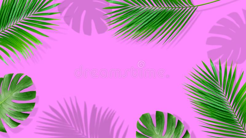 Summer composition. Tropical palm leaves on yellow background. Summer. Concept stock photo