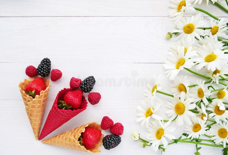 Summer concept, summer berries and white daisies royalty free stock photo