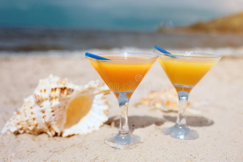 Summer concept: fresh exotic orange cocktails on the beach. Beautiful white shell lying on sand besides. Sun shines. Bright. Horizontal lerge view. Paradise stock images