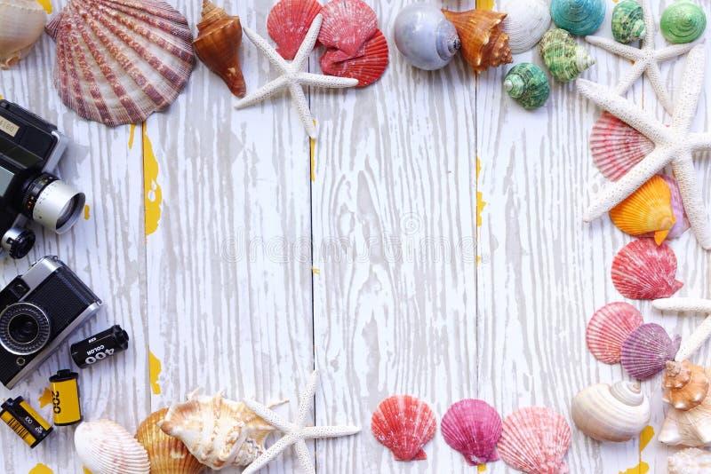 Summer concept. Starfish and seashells royalty free stock photography
