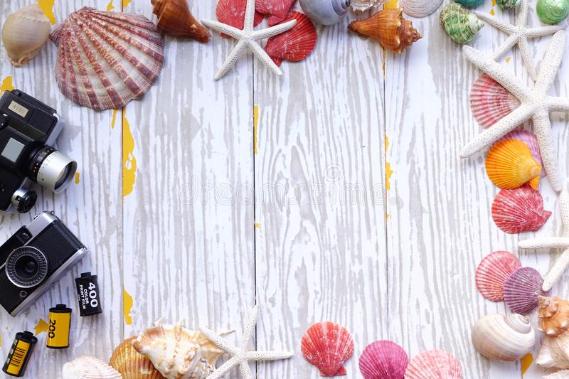 Summer concept. Starfish and seashells stock photo