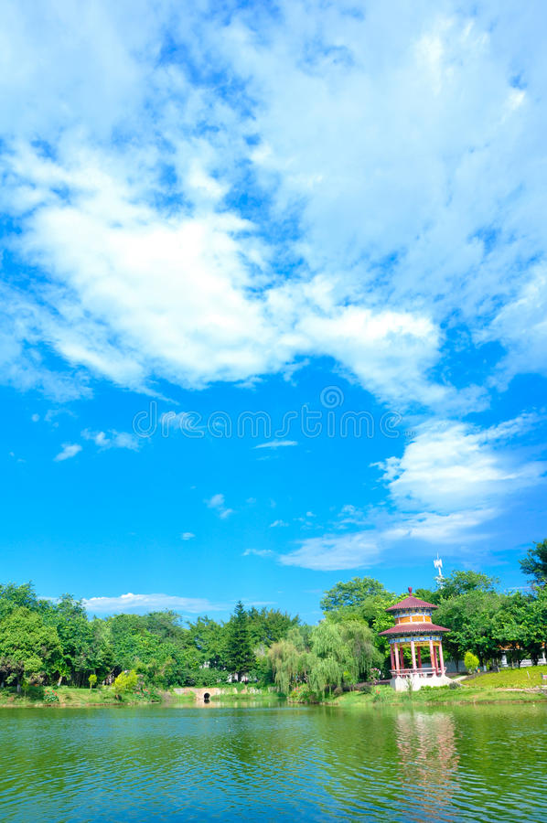 Park view. Summer corner of the park royalty free stock photography