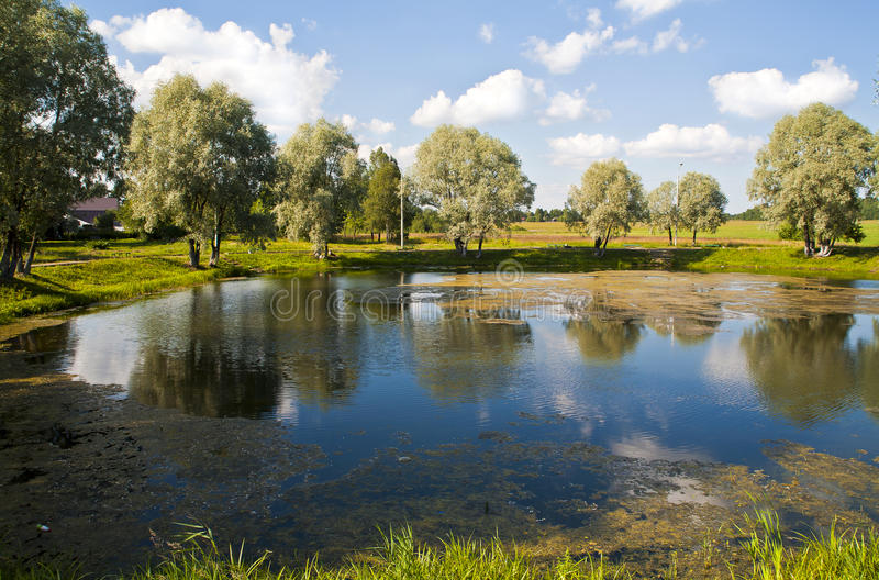 Download Summer Country Landscape With Pond. Stock Image - Image of cloud, calm: 15334189