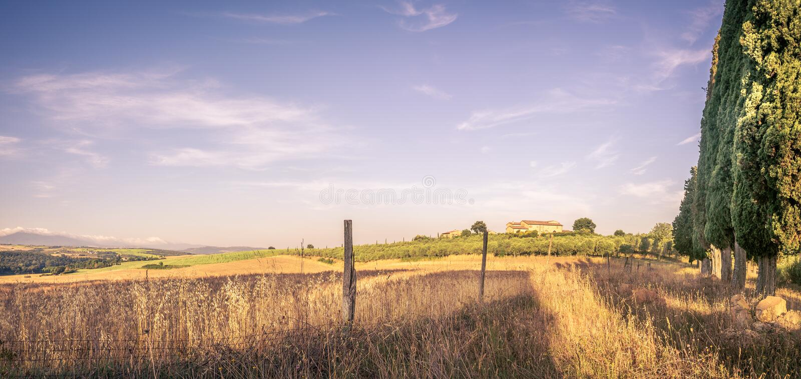 Summer country landscape royalty free stock photography