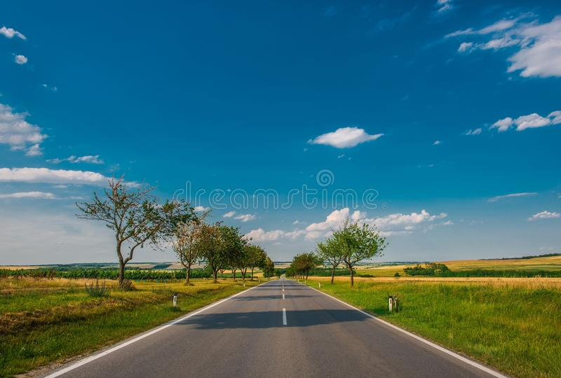 Summer Countryside Road royalty free stock photo