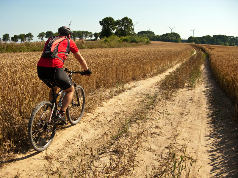 Summer cycling. Summer dirt path cycling across harvested wheat field. Biker figure of a man visible royalty free stock photography