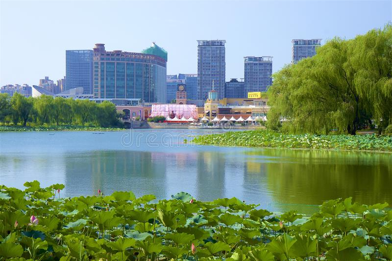 Chaoyang park, Beijing. Summer day in Chaoyang park, Beijing royalty free stock photos