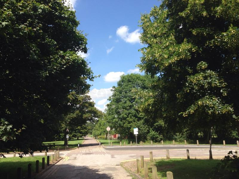 Summer Day Markeaton Park. Beautiful Day in Markeaton Park royalty free stock photography