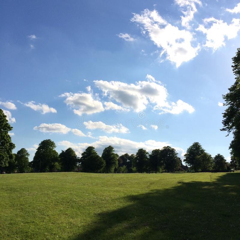 Summer day at the park in Britain royalty free stock photography