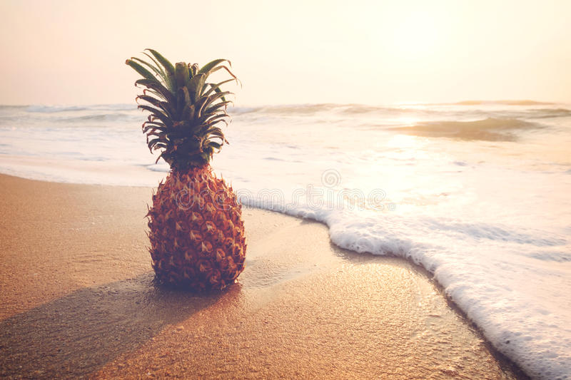 Summer day with pineapple royalty free stock image