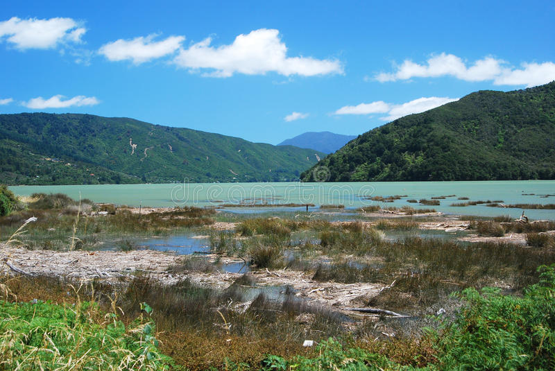 Download Summer Day At Scenic Queen Charlotte Sound Stock Photo - Image: 23750066