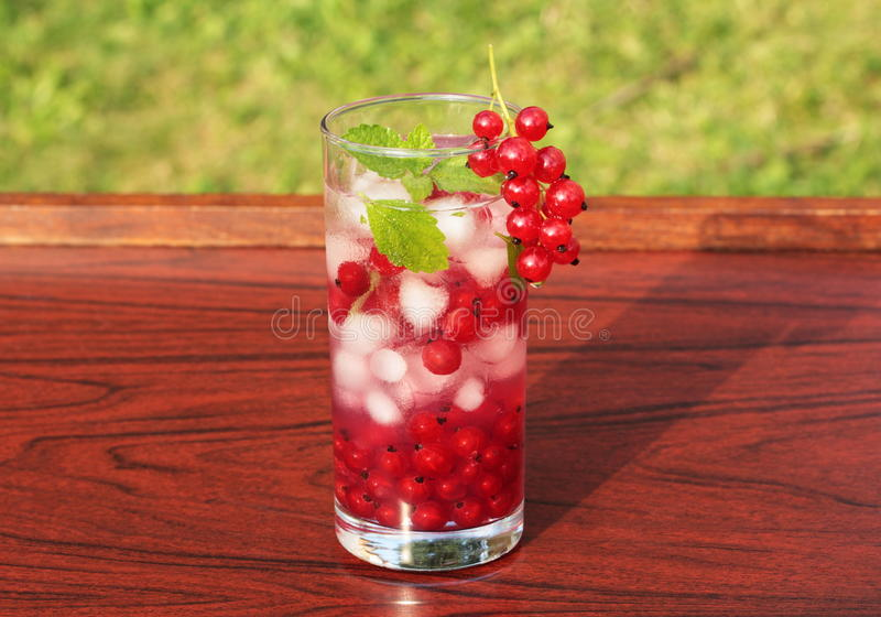 Summer drink with redcurrant. Refreshing summer drink with redcurrant and mint royalty free stock images