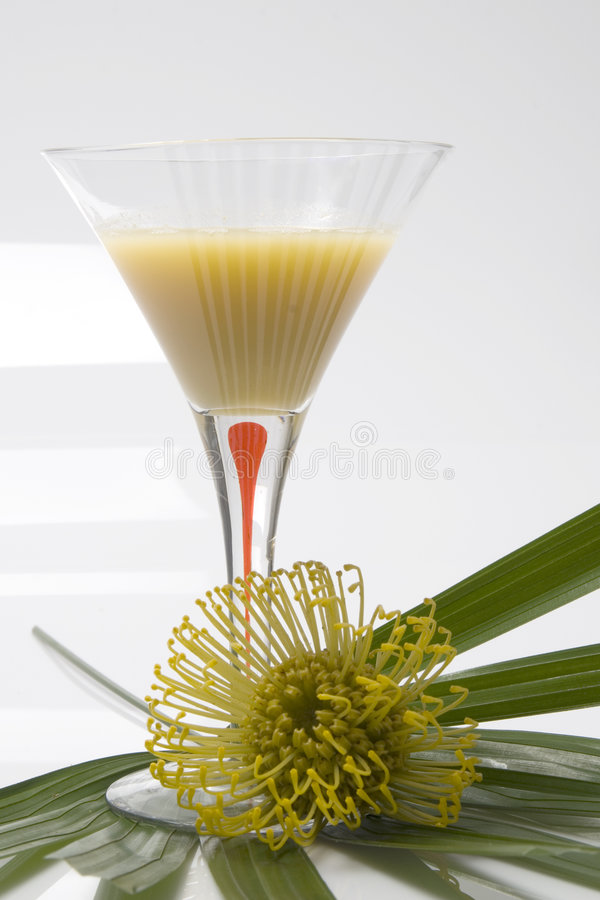 Download Summer Drinks Royalty Free Stock Photos - Image: 2305088