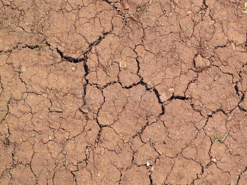 Summer drought soil royalty free stock image