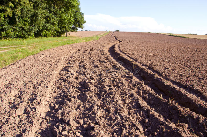 Summer End Tillage In The Farm Royalty Free Stock Photo