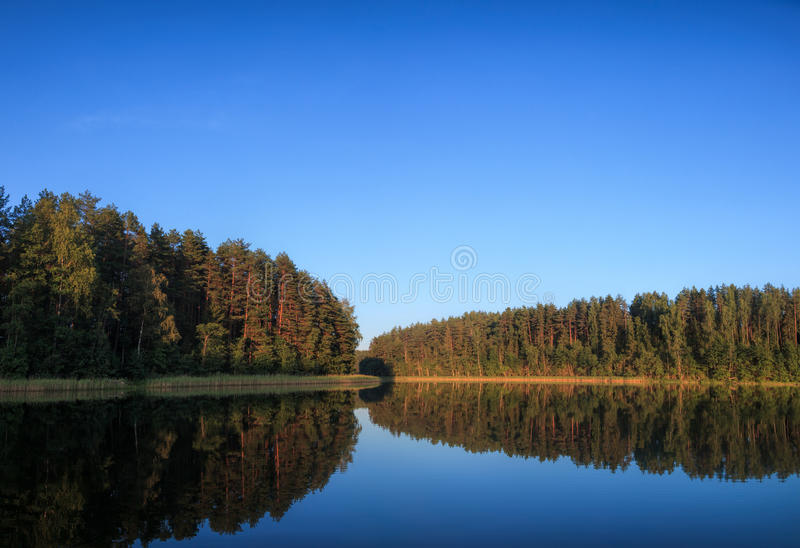 Summer evening at a forest lake royalty free stock photography