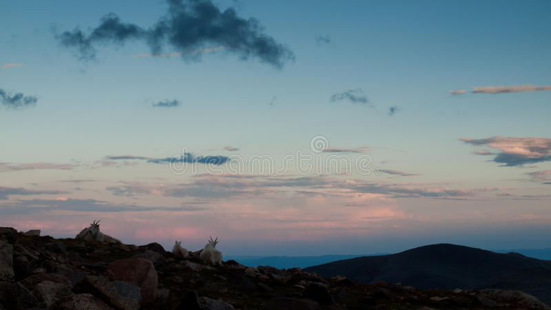 Download Summer Evening High In The Rockies Stock Image - Image: 21251889