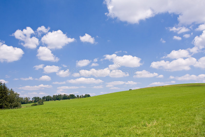 Summer farm land
